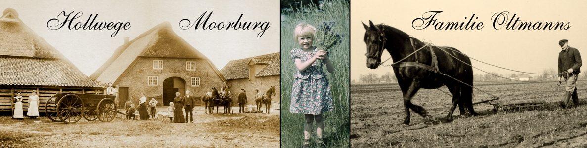 Hollwege, Moorburg und Felde